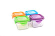 Wean Green Snack Cubes Baby Food Containers - Multi-Color Garden 4 Pack Featuring Grape