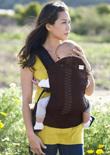 USED Beco Baby Carrier Butterfly II - Ashley - Final Sale